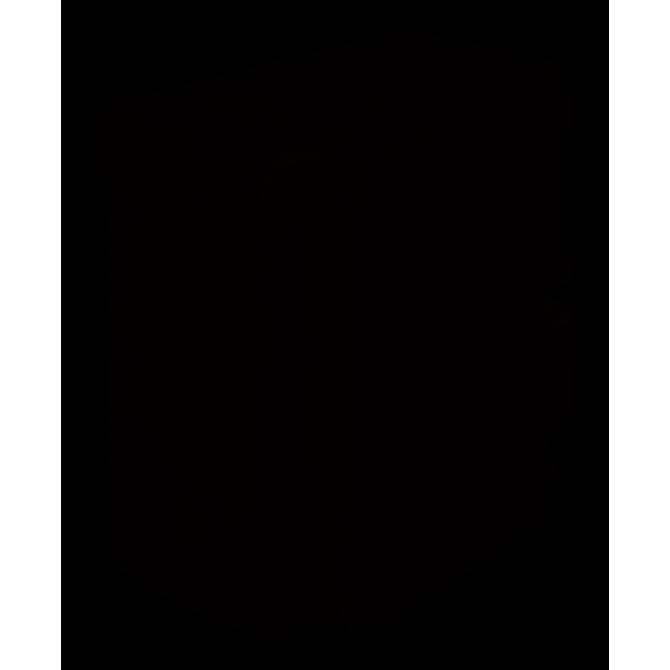 KORG  SP250 MB